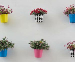 Ideas para construir un jardín vertical