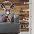 ¡Ya está aquí el número 3 de nuestra revista!